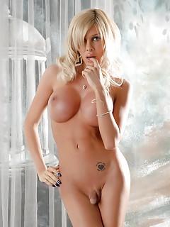 Shemale Pornstar Pics