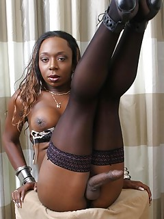 Shemale Stockings Pics